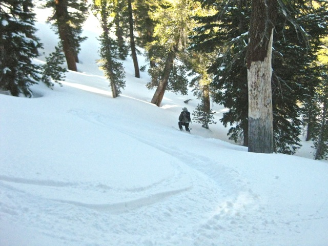 Waterhouse's north-facing aspect, moderate slopes and huge trees make for great skiing. This area was never logged back in the mining days; most of the forest around Lake Tahoe do not look like this!