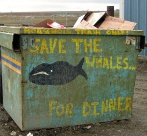 "Folks around here are subsistence whalers. Mike says, ""this, while intended as humorous, is also an honest statement of their sentiments. These people can live off of a relatively few bowheads a year, so they don't like industrial extraction. It cuts into their food source."""