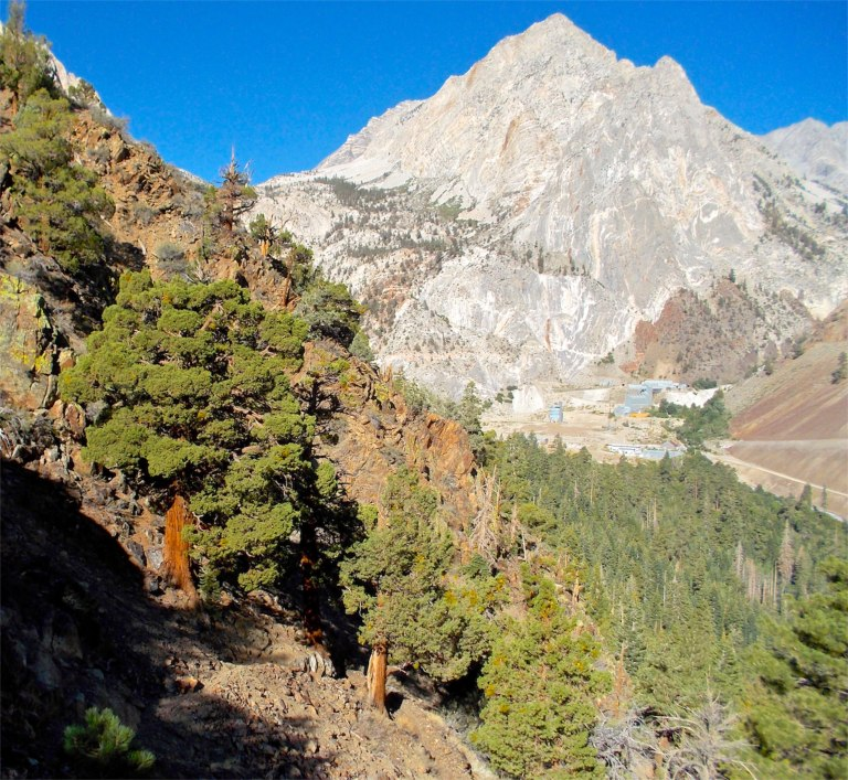 Steep trail provides views almost right away of Pine Creek Canyon.