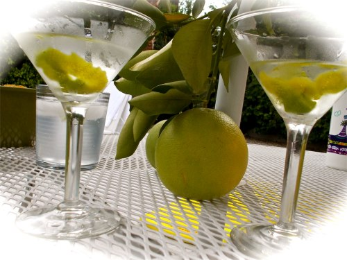 Martinis with a twist of lime felt very Palm Springs.