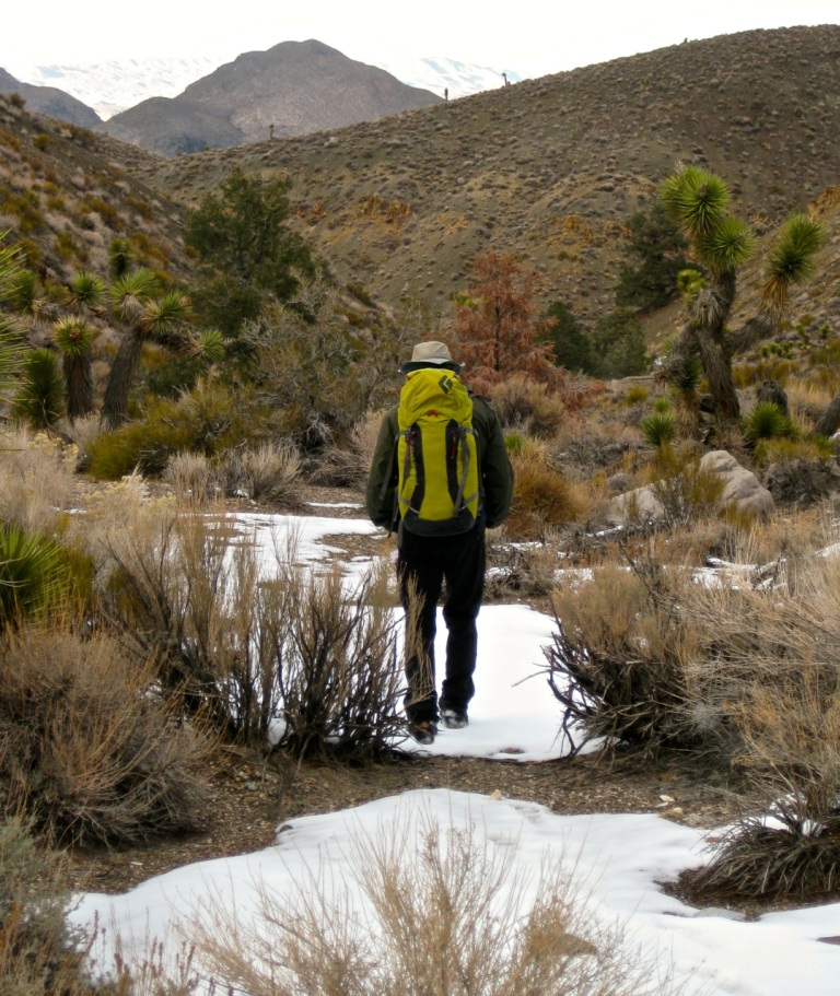 After a couple miles of descent, we were below most of the snow and were able to camp in this pretty area of Joshua trees.