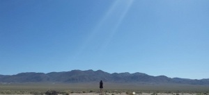 Searching in vain for the elusive U2 Joshua Tree, Darwin Plateau, Inyo Mountains.