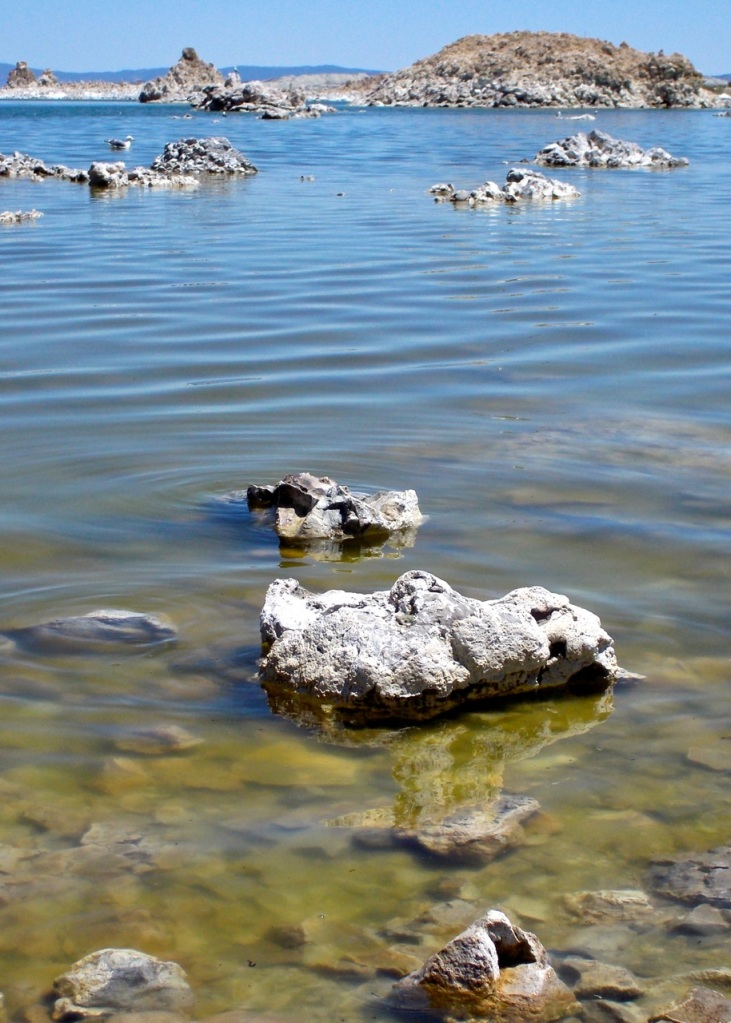 Mono Lake shallows with tufa, which forms from minerals in the lake.