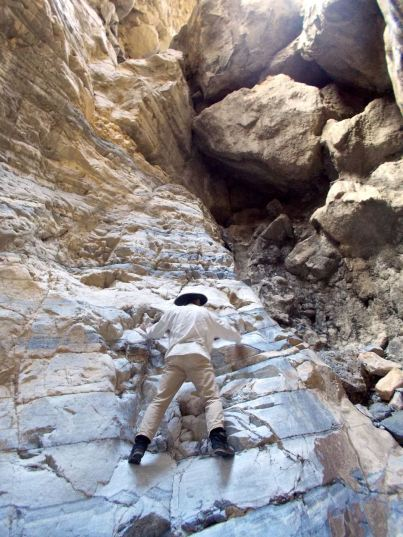 High fall in Craig Canyon, Inyo Mountains.
