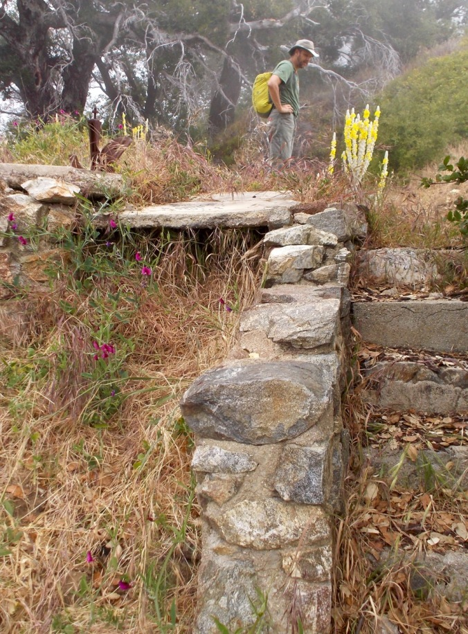 Homestead foundation. This ridgetop location boasts stunning views of Big Sur when the fog is not present. But we enjoyed the cool and mist.